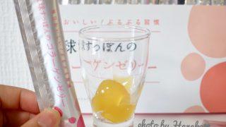 琉球すっぽんコラーゲンゼリー 効果